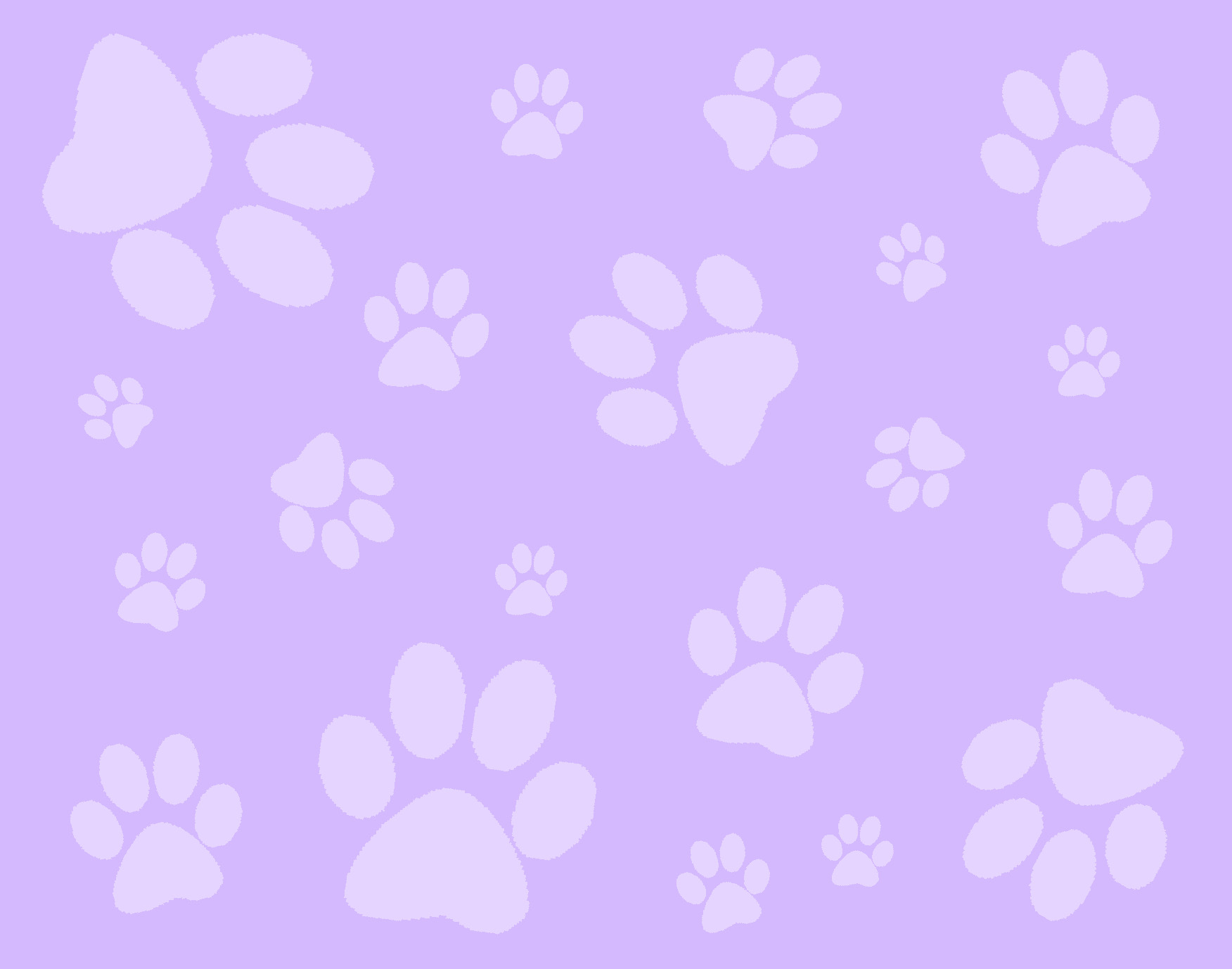 Top Paw Prints In The Wallpapers