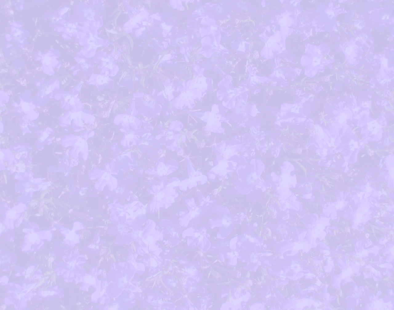 the gallery for gt light purple flower background